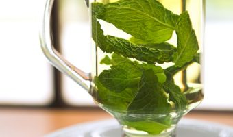 make tea with fresh leaves